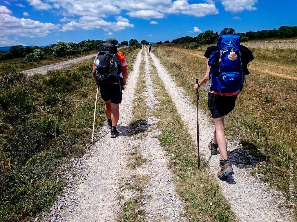 Camino Day 20
